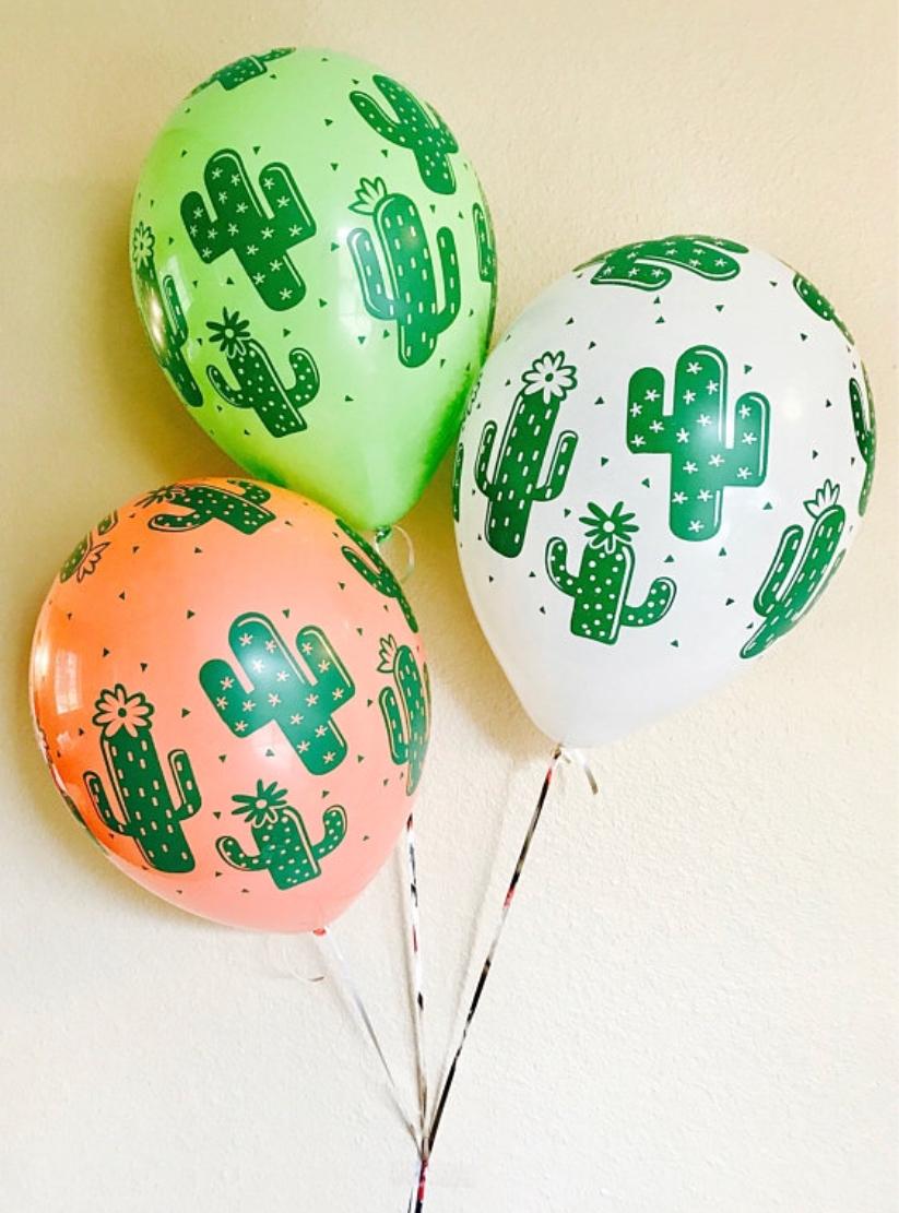 A Dozen Of Cactus